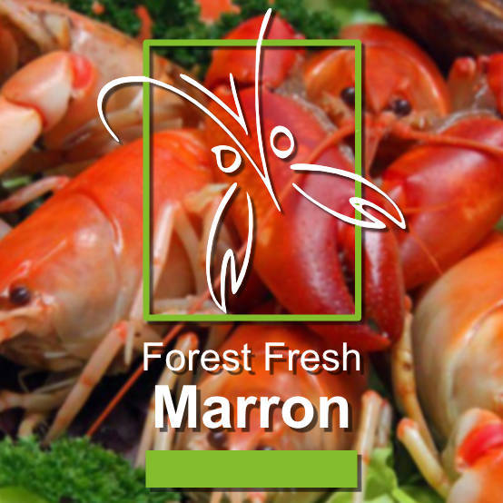 Forest Fresh Marron