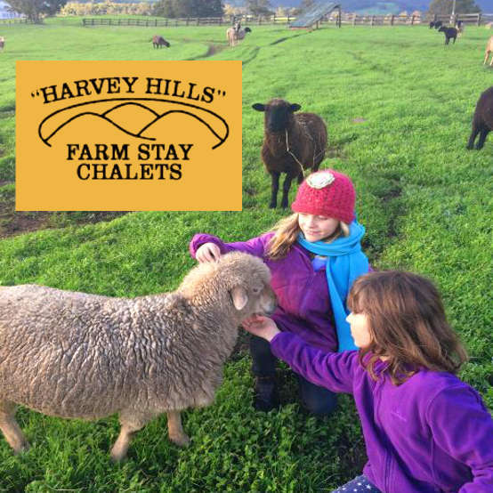 Harvey Hills Farm Stay Chalets