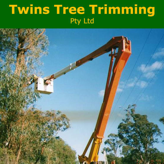 Twins Tree Trimming -  Bunbury
