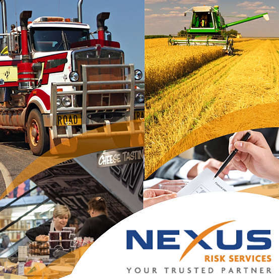 Nexus Risk Services