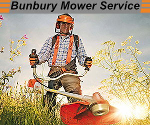 Bunbury Mower Ser...