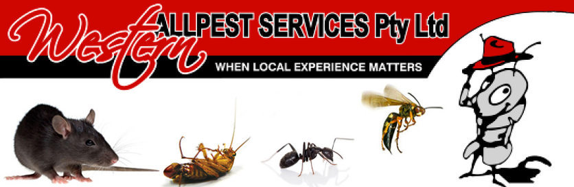 Western Allpest Services Pty Ltd is a Local Guide Search